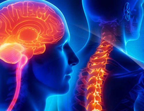 Guzy mózgu i rdzenia kręgowego – jakie są objawy choroby?