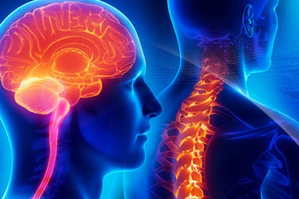 Guzy mózgu i rdzenia kręgowego